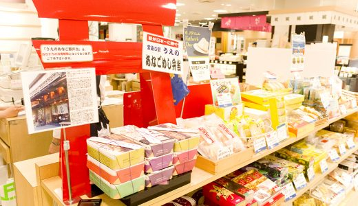 広島の絶品弁当「うえの」の穴子飯は宮島に行かなくても買える