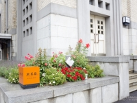 札幌に行ったら必ず食べたい「北菓楼」札幌本館の限定スイーツ2つ #北海道