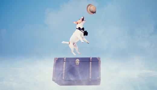 海外旅行も国内の観光も。トラベルバッグを選ぶポイント7つ